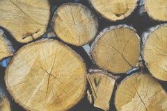 Houten logboekachtergrond Stock Afbeelding