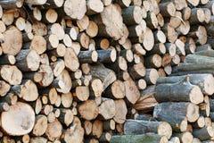 Houten Logboeken met Bos op Achtergrond Boomstammen van bomen in de voorgrond worden en worden gestapeld gesneden die royalty-vrije stock fotografie