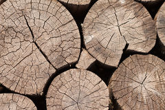 Houten logboekenachtergrond, textuur Stock Afbeelding