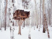 Houten logboekhuis op een boom Stock Afbeelding