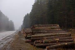 Houten materialen De bosbouwindustrie stock afbeelding