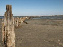 Houten meerpalen in het zand tegen het estuarium en de blauwe hemel kuyalnitsky estuarium stock foto
