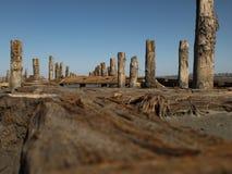 Houten meerpalen in het zand tegen het estuarium en de blauwe hemel kuyalnitsky estuarium stock fotografie