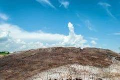 Houten met bewolkte hemel Stock Afbeeldingen