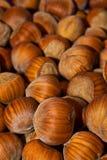 Houten noten - een hazelnoot Royalty-vrije Stock Foto