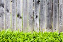 Houten omheining en groen gras De lente of de zomerachtergrond Royalty-vrije Stock Foto