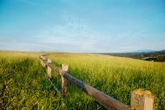 Houten omheining op een grasgebied tegen een blauwe hemel Stock Foto