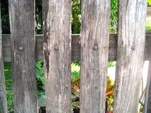 Houten omheiningen Stock Foto