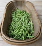 Houten oogstmand trug met groene Franse bonen Royalty-vrije Stock Afbeelding