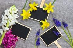 Houten oppervlakte met kleurrijke springflowers Stock Afbeeldingen