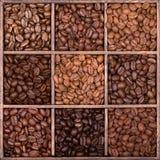 Houten opslagdoos die met koffiebonen wordt gevuld Royalty-vrije Stock Afbeelding