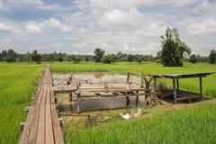 Houten oude brug 100 jaar Stock Afbeelding