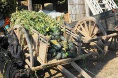 Houten oude wagen met pompoenen Royalty-vrije Stock Afbeelding