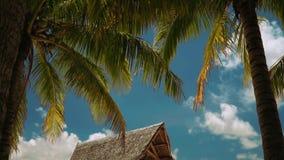 Houten paviljoen op wit zandstrand onder palmen met sommige mensen stock video
