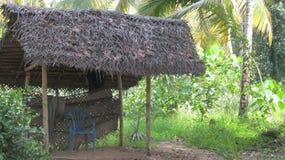 Houten pergola met een met stro bedekt dak stock foto afbeelding