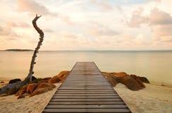 Houten pijler bij het strand Stock Foto's