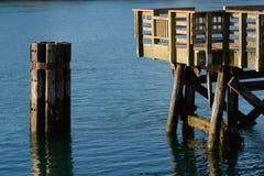 Houten pijler en dolfijnstructuur op de oceaan Stock Foto