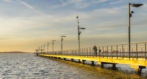 Houten pijler op het meer Stock Fotografie