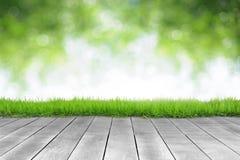 Houten plank en de heldere achtergrond van het de lente verse groene verlof bokeh stock foto's
