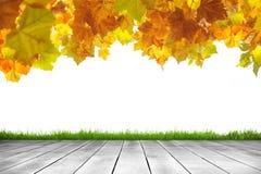 Houten plank en de herfstbladeren op witte achtergrond stock foto