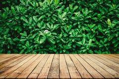 Houten plank met abstracte natuurlijke groene bladerenachtergrond voor productvertoning royalty-vrije stock afbeeldingen