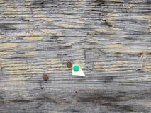 Houten plank met drie punaisen en klemmen en een spijker royalty-vrije stock afbeelding