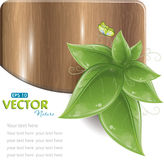 Houten plank met groene bladeren en vlinder Stock Afbeeldingen