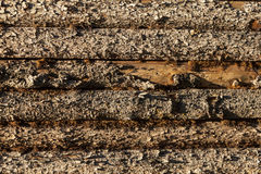 Houten planken aan kant van schuur Royalty-vrije Stock Foto's
