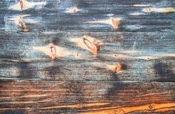 Houten planken met knopen en boomringen Royalty-vrije Stock Foto's