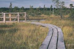 houten plankpromenade op moerasgebied in de herfst - de uitstekende retro film ziet eruit royalty-vrije stock foto's