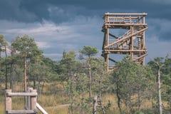 houten plankpromenade op moerasgebied in de herfst - de uitstekende retro film ziet eruit royalty-vrije stock afbeeldingen