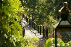 Houten Plankweg over Vijver met Lantaarn in Voorgrond Royalty-vrije Stock Afbeeldingen
