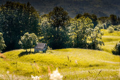 Houten plattelandshuisje in de berg in de zomer Royalty-vrije Stock Foto