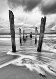 Houten polen op het strand in zwart-wit royalty-vrije stock foto