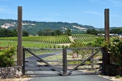 Houten poortingang aan wijngaard Stock Foto's