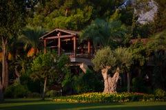 Houten portiek van een plattelandshuisje in een groene tuin met bloemen royalty-vrije stock foto