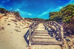 Houten promenade door een zandduin in Sardinige stock afbeelding