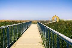 Houten promenade door het moeras in Alviso Marina County Park, San Jose, Californië stock foto