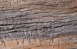 houten raad met gaten en barsten royalty-vrije stock afbeeldingen