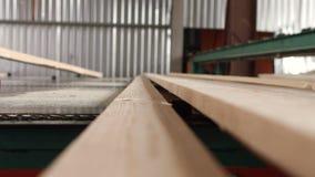 Houten raad van pijnboom na houtbewerking Raad voorbij het zagen proces stock video