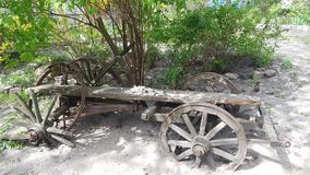 Houten retro vogne in tuin stock afbeelding