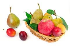 Houten rieten mand met gehele rijpe vruchten - peren, pruimen, abrikozen en appelen op een witte achtergrond Stock Foto's