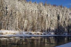 Houten rivier Stock Foto's