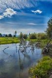 Houten Rivier die door het van de het gebiedsdag van Jackson F Kimball State Recreation het Gebruiksgebied vloeien stock afbeelding