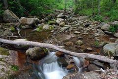 Houten rivier in Nationaal park Shenandoah Royalty-vrije Stock Foto