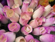 Houten rozen Royalty-vrije Stock Fotografie