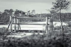 Houten sleep die door een bevroren moeras in Letland leiden Stock Foto