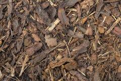 Houten spaanders in het park stock afbeelding