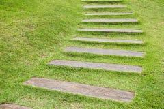 Houten stap op gras. Stock Fotografie