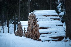 Houten stapel met sneeuw stock foto